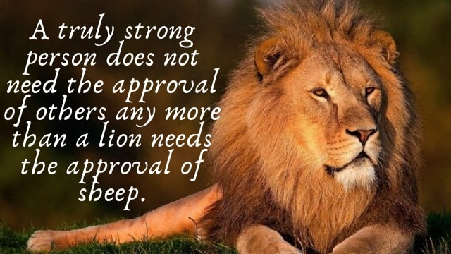 lioness strength quotes