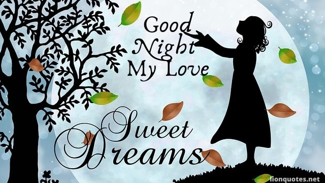 Good Night Love Meme - My Love | Images | Quotes