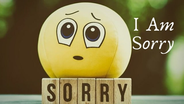 Sorry Quotes in Hindi With Images Messages For Lover | Best Friends
