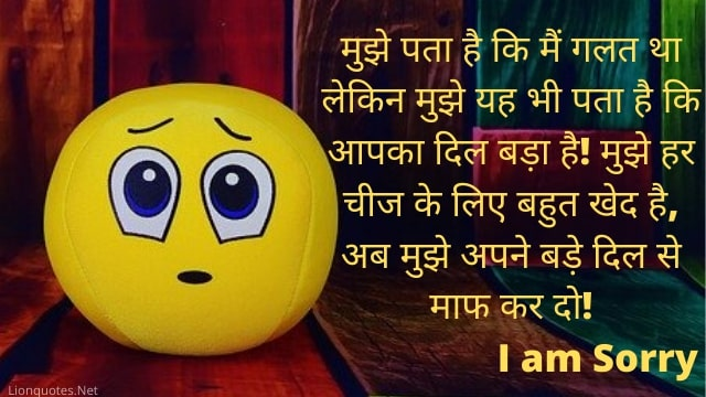 Sorry Messages For Wife in Hindi