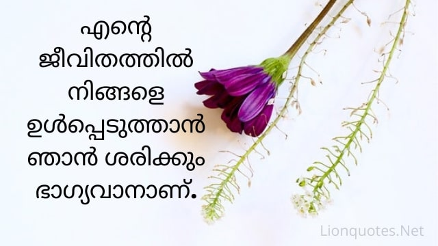 malayalam quotes about love